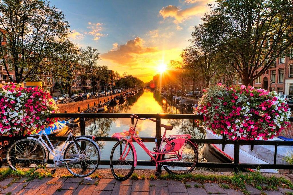 Заполнение анкеты на визу в Нидерланды